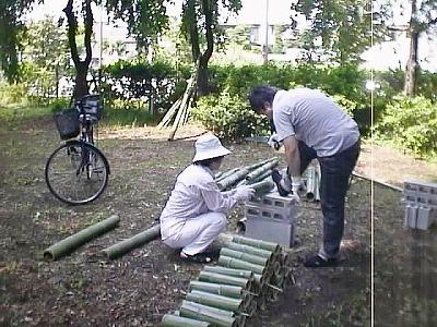 竹を切りそろえる