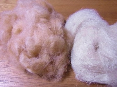 茶綿と野蚕シルク